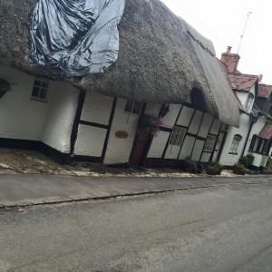 warwick thatch 3