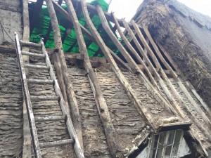 warwick thatch 5