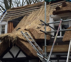 re-thatching Leicestershire