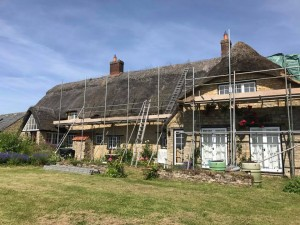 Before photo of Re-Thatch