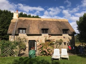Thatched Re-Ridge France